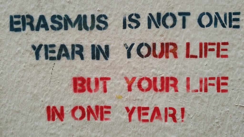 Erasmus Project, il mondo dietro la porta di casa – Prima puntata