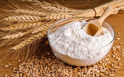 """Dalla terra alla tavola: convegno""""Farina, farine: tra grani antichi e moderni, moliture, tipi"""""""