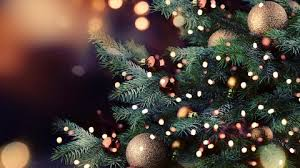 Christmas Lectures a Vercelli e Alessandria